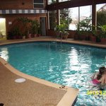 Pool area with tropical lpants
