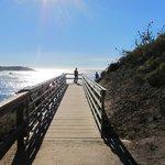 Sea Lion Point trail
