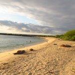 Playa Carola
