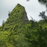 Pali at lookout
