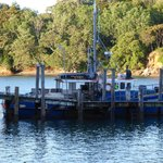 Fishing boat in Mangonui Harbour