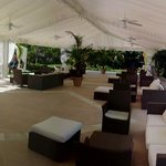 lounge at main pool