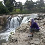 Paihia is close to Haruru Falls
