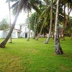 LuckWin Villa from coconut garden...