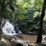 Wahconah Falls 2013.