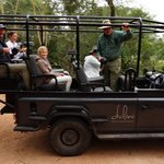 The six-guest Land Rover, best viewing available