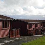 Pinelog cabins