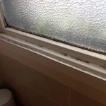 mould round bathroom window