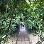 ponte sopra il fiume di fronte al lodge