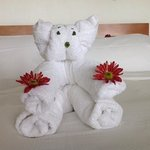 Love this cute animals made by towels
