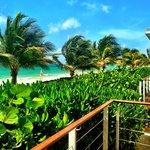 View from beachfront casita