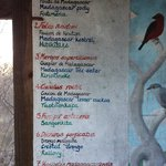 Close up of the information board on local birds (with Latin, French, English & Malagasy names)