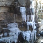 Frozen pond falls