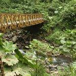 Vara Blanca, Коста-Рика
