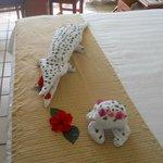 crocodile in my room...Thanks Audi
