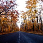The drive inside the park in the fall