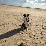 Gorleston Beach Photo