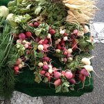 Heirloom radishes from the local farmers market selected by executive chef Lalo Sanchez