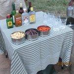 bar set up on safari