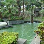 Зеленая огромная территория отеля