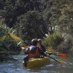 Waitoi Creek - Ngunguru River
