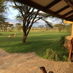 View from the front porch of the house overlooking the plains of the Mara