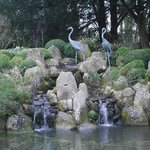 Water Feature in the grounds