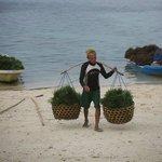 Sea weed farmers