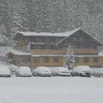 paletti im schnee