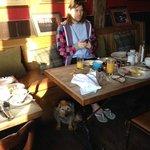 Breakfast, little baby dog allowed!