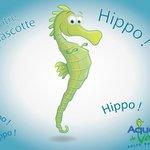 Notre mascotte Hippo