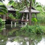 villa's in het park