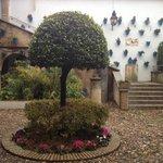 андалузский дворик
