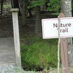 Cute Nature Trail