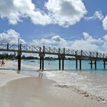 pier with rope swing