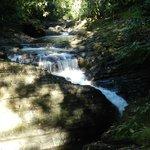 Cascada Verguel