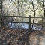 Walking along side the Wissahickon Creek