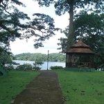 Área verde e lago