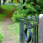 Gate to garden walk
