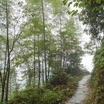 Ping An Mountain Trail