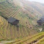 Ping An terraces near Li An Lodge