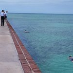 On the Moat of fort Jefferson