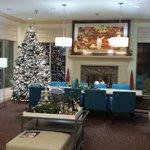Lobby with tree.