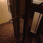 Escalera y hueco del ascensor