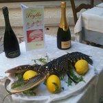 RIstorante Scylla Dai cugini dal 1992. Specialità di mare. Provare per credere.