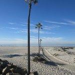 The Beach by Hotel Del Coronado...