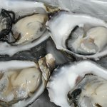 Delicious Pacific Oysters