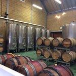 Barrels and Vats
