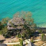 vue aérienne du bungalow dans l'arbre