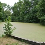 Frilandsmuseet petit lac